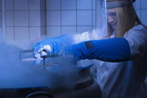 Proben lagern in flüssigem Stickstoff