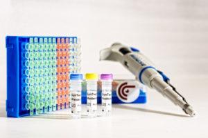 oncgnostics GmbH: Im Bereich Gebärmutterhalskrebs-Früherkennung vollzieht sich ein Wechsel hin zu Tests auf humane Papillomviren im Screening. Eberhard J. Schorr, photosign.de