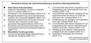 Risiken der Unternehmensleitung 2