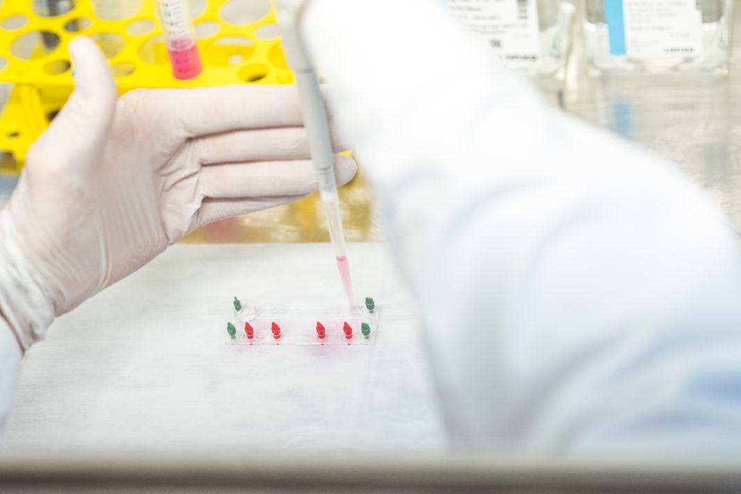 Jenaer Biotechnologieunternehmen Dynamic42 wirbt sieben-stelliges Investment ein
