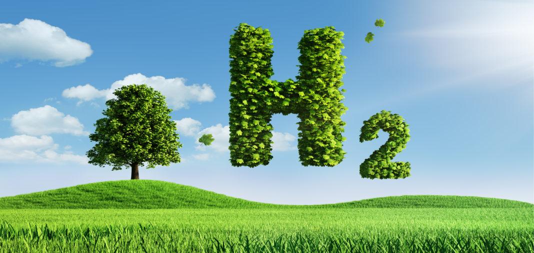 Grüner Wasserstoff: Klimaneutrale Energiequelle auf dem Vormarsch
