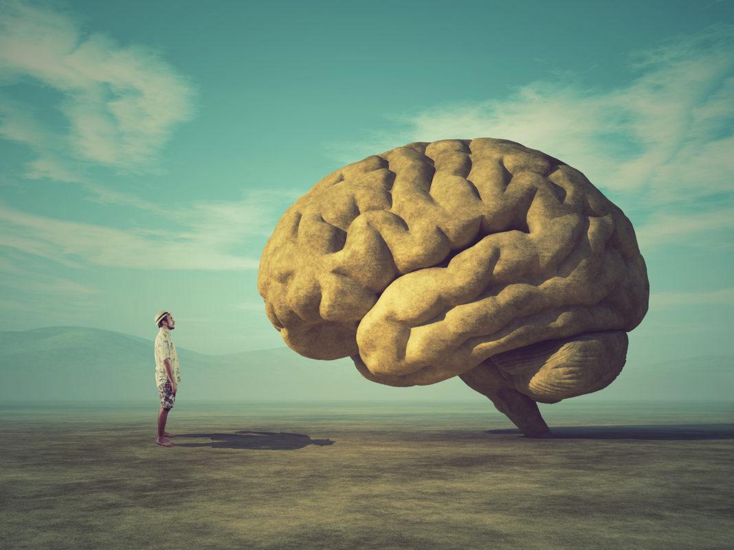 Computer-Brain-Interface Unternehmen CereGate mit Serie-A-Finanzierung
