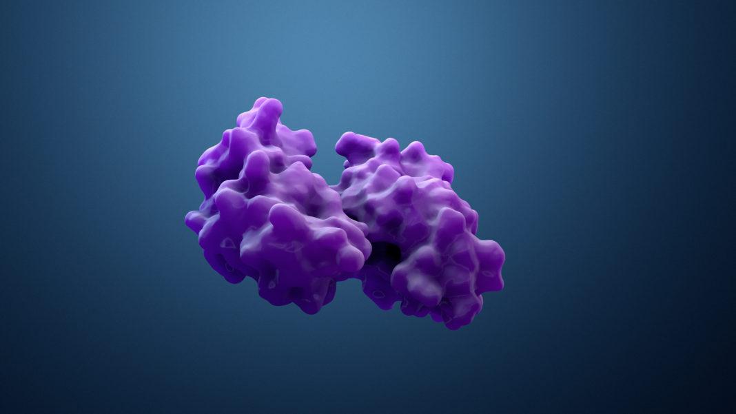 Antikörper-Tools: Proteintech erwirbt ChromoTek