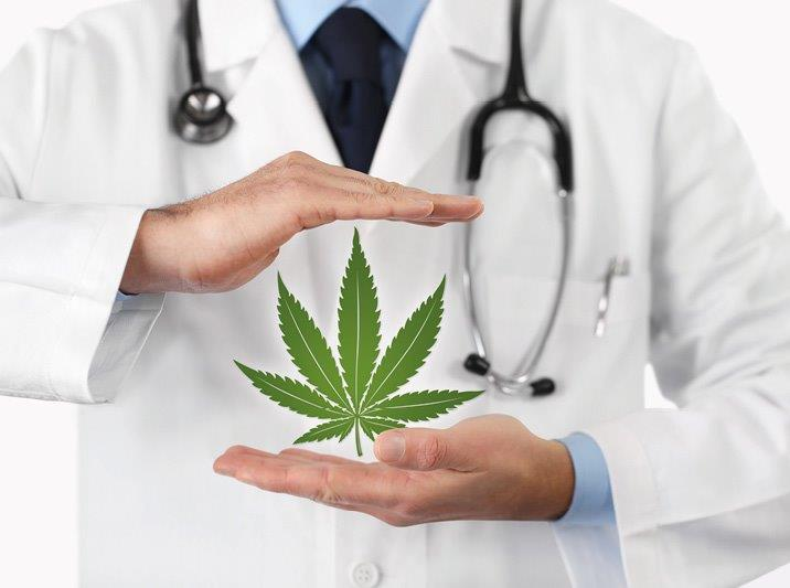 Willkommen, grüne Medizin!