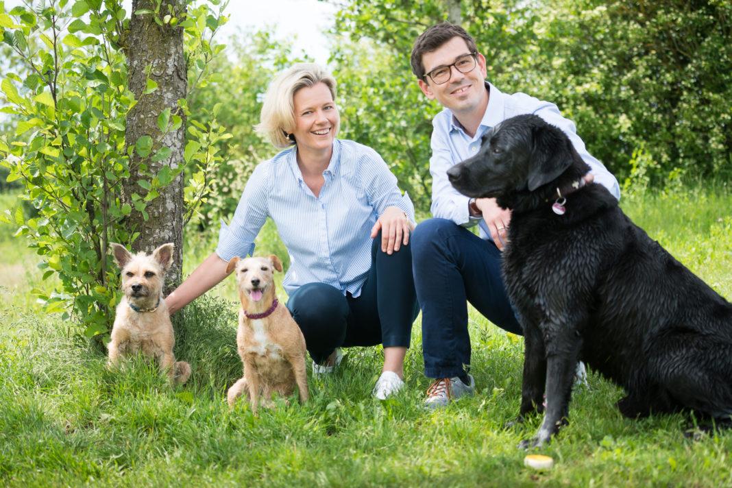 Antikörpertherapie bei Hunden