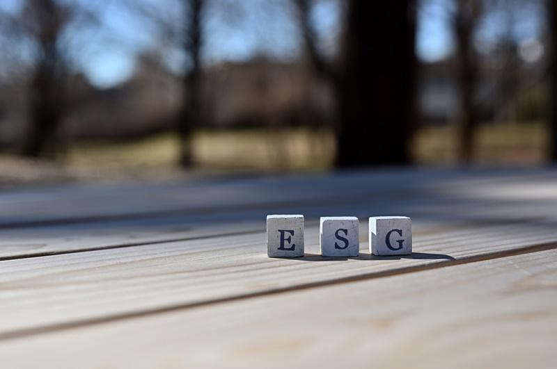 Kommentar-ESG-Screens-verursachen-mitunter-widersinnige-Ergebnisse
